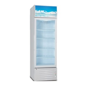 Retail and merchandise display refrigerator LG-238