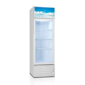 Retail and merchandise display refrigerator LG-198