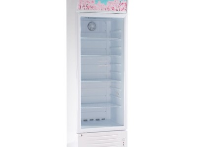 Retail and merchandise display refrigerator LG-278NF